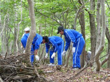 西浅井中の生徒と森をそうじ