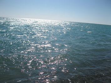Озеро Балхаш в солёном его краю.