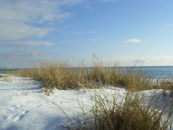Fehmarn im Winter Quelle Tourismus-Service Fehmarn