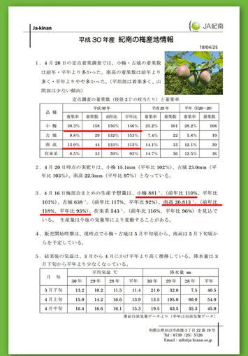 2018産地情報 JA紀南【4/25発表】