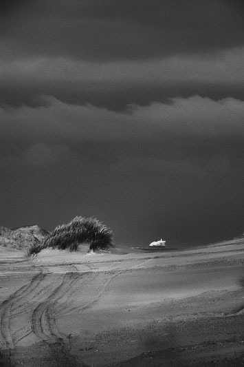 Un chemin dans la dune
