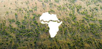 Grande Muraglia Verde nella regione del Sahel