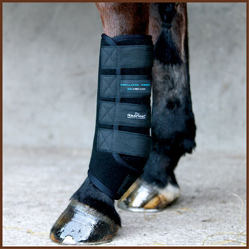 Reitsport Heiniger - Blogartikel Ice-Vibe-Boots