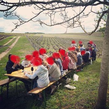 visite-et-decouverte-des-vignes-et-du-vignoble-pour-enfants-groupes-scolaires-Vouvray-Amboise-Tours-Touraine-Vallee-de-la-Loire