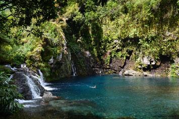 Cascade du Trou Noir  La Réunion 974