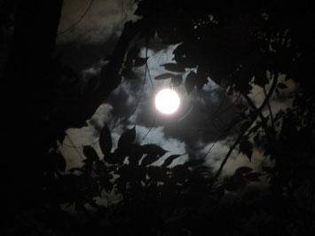 2015/9/29 ミカエル祭の満月
