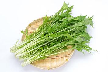 ザルに置かれた新鮮な水菜の束