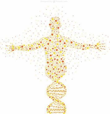 potentiels personnels-ADN-orientation professionnelle-orientation scolaire-métier-fonctions-compétences-capacités-recrutement-entreprise