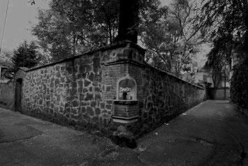 El callejón del aguacate, santa catarina