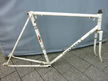 singlespeed-fixie-rennrad-upcycling-shepherds world