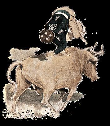 orthe, landes, aquitaine, peyrehorade, course landaise, ganaderia, sauteur, cordier, talanquère, vache
