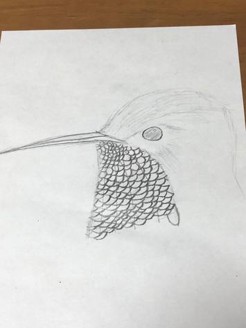 息子作 鳥の頭の絵