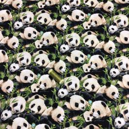 Patchwork Pandas , schwarz-weiss-grün
