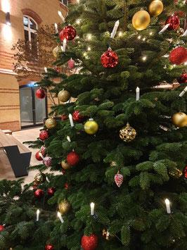 Geschmückter Weihnachtsbaum 400/450 cm