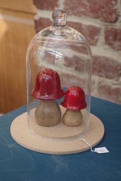 globe champignons