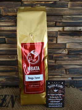 Caffé Bonga Forest