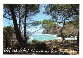 Postkarten mit Text  10x15