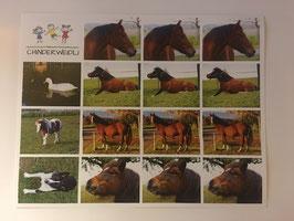 16 Sticker Chinderweidli Tiere