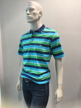 Herren Poloshirt grün/blau
