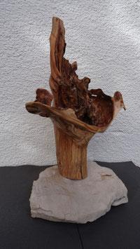Eruption/ Lärchenwurzel - Sockel Kalkstein Kornaten