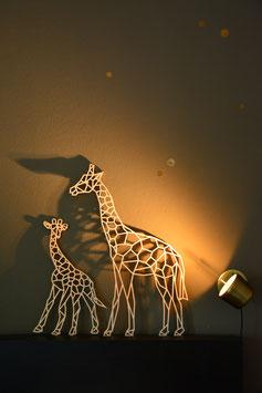 Giraffenmama und Kind