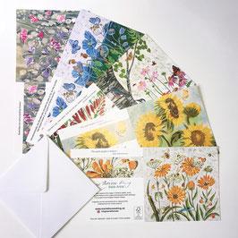Floral Designs 2 Art Card Multipack
