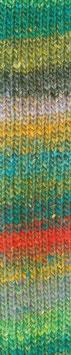 Silk Garden Sock Fb 461