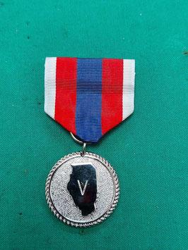 US Medaglia commemorativa, decorazione Guardia Nazionale