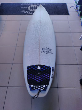 Mister Fly Surfboards 5.10'