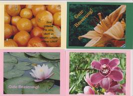 4 verschiedene Foto-Faltkarten: GUTE BESSERUNG