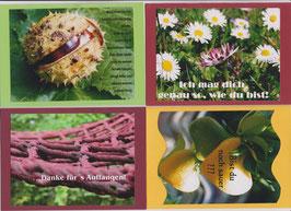 4 verschiedene Foto-Faltkarten: FREUNDE - MANCHMAL BIN ICH BORSTIG UND STACHELIG
