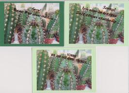 3 Foto-Faltkarten: SORRY, BIN STACHELIG