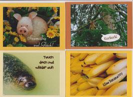 4 verschiedene Foto-Faltkarten: LUSTIGE GRÜSSE