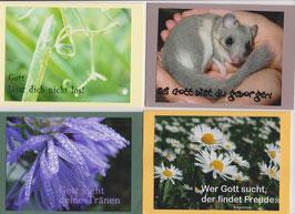 4 verschiedene Foto-Faltkarten: WER GOTT SUCHT, DER FINDET FREUDE
