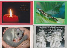 4 verschiedene Foto-Faltkarten: BEI GOTT BIST DU GEBORGEN
