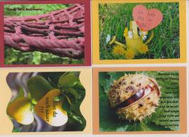 4 verschiedene Foto-Faltkarten: FREUNDE - DANKE FÜR´S AUFFANGEN
