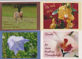 4 verschiedene Foto-Faltkarten: FREUNDE - DURCH DICK UND DÜNN