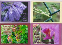 4 verschiedene Foto-Faltkarten: GOTT SIEHT DEINE TRÄNEN