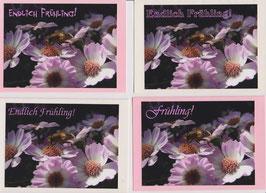 4  Foto-Faltkarten: ENDLICH FRÜHLING