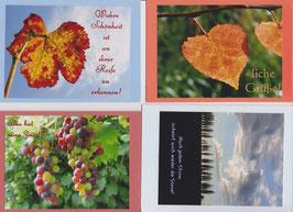 4 verschiedene Foto-Faltkarten: WAHRE SCHÖNHEIT