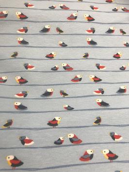 Jersey Vögel
