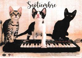 Calendario Solidario de 2021 de AACC con ilustraciones de Manolo García