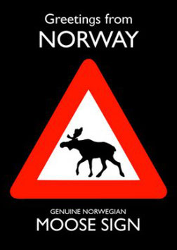 NORGE MOOSE SIGN