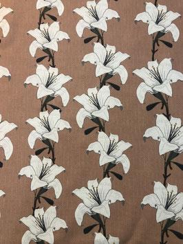 Loneta flores melania