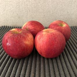 Pommes variété   Gala