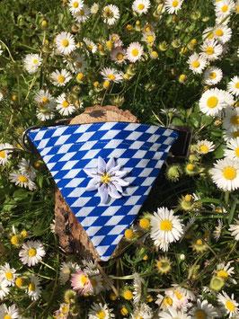 "Dreieckstuch Hundehalsband ""Raute blau-weiß + Edelweißblüte"""