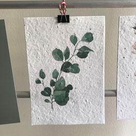 Postkarte aus Samenpapier - Eucalyptus I