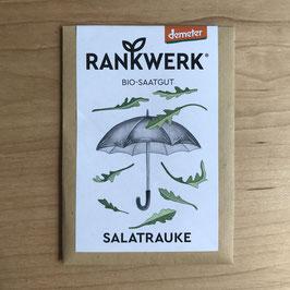 """Rankwerk Saatgut - Salatrauke """"Ruca"""""""