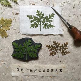 """Tampon """"Feuille de Pelargonium"""""""