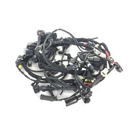 Kabelboom Ducati Multistrada 1200S ('11-'12)